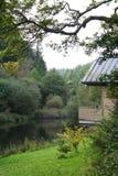 lakeside kabin Obraz Royalty Free