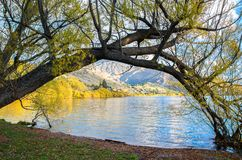 Lakeside of the Lake Hayes. It is located in the Wakatipu Basin in Central Otago,South Island in New Zealand Stock Photos