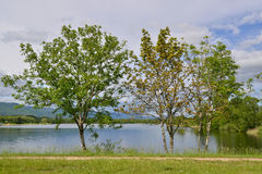 On the lakeside Royalty Free Stock Photos