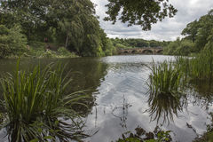 Lakeside at Nostell Priory Royalty Free Stock Images