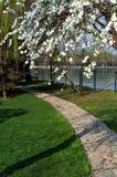 Lakeside path. Royalty Free Stock Image