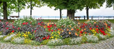 Lakeside promenade with flower bed at lake bodensee. Lakeside promenade with flower beds view to lake bodensee, tourist park bregenz, austria stock image