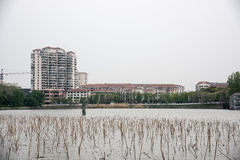Lakeside Residential building Stock Image