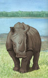 Lakeside Rhino. White rhinoceros in wetlands habitat Royalty Free Illustration