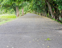 Lakeside road made with  asphalt Royalty Free Stock Images