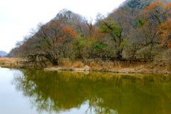 Lakeside scenery Royalty Free Stock Image