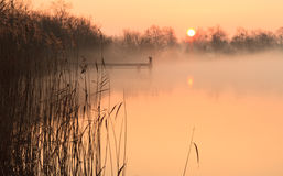 Lakeside sunrise. Foggy and yellow sunrise at a jetty in a lake stock photo