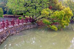 Lakeside tree-Nanchang Mei Lake Scenic Area. Nanchang Mei Lake scenic spot in detail, refined garden, curved Pavilion, platform and other types of gardens stock photography