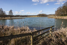Lakeside view in Cheshire Royalty Free Stock Image