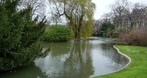 Lakeside View of an Landscape Garden.  stock footage