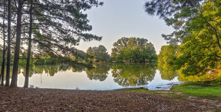 Lakeside View with Reflection. A lakeside view with a treeline reflection on a warm Summer evening in Halcyon Summit in Montgomery Alabama Royalty Free Stock Images