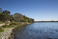 Lakeside 3 Stock Photography