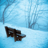 Lakeside in winter. A stone chair at lakeside in winter Stock Photo