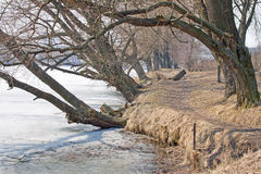 lakeside Wiosna zdjęcie stock