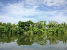 lakesidelandskap med klart vatten Royaltyfri Bild