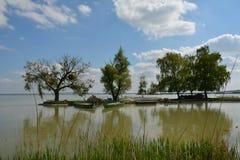 Lakesiden beskådar i sommar Royaltyfri Bild