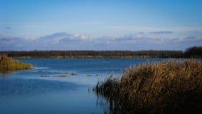 Lakesidesikt Royaltyfria Foton