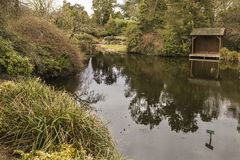 Lakesidesikt på Burnby trädgårdar Royaltyfri Foto