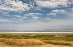 lakesommar Arkivbild