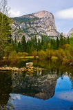 lakespegel yosemite Royaltyfria Bilder