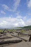 LakeSuperiorShoreline Fotografering för Bildbyråer