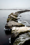 lakeveluwewinterlandscape Fotografering för Bildbyråer