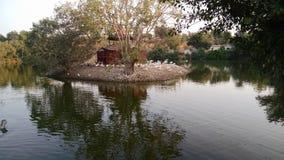 Lakeview in de avond stock foto