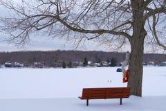 Lakeview in de Winter Stock Afbeeldingen