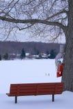 Lakeview in de Winter Stock Foto