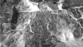 Lakewood公园达拉斯得克萨斯 免版税图库摄影