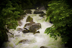 Lakkam waterfalls. And forest nature Royalty Free Stock Photos