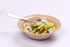 Laksam malaysian food Royalty Free Stock Photo