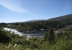 Laksforsen siklawa otaczająca lasem, Nordland Obraz Royalty Free