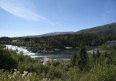 Laksforsenwaterval door bos, Nordland wordt omringd die Royalty-vrije Stock Afbeelding