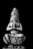 Lakshmi, de gever van rijkdom royalty-vrije stock fotografie