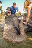 Lakshmi the elephant. HAMPI, INDIA - 28 JANUARY 2015: Morning ritual of bathing Lakshmi the temple elephant of Virupaksha Temple with tourists Stock Image