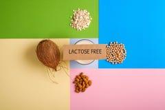 Laktosefreie Milchprodukte oder alternative Arten des Milchkonzeptes Glas Milch, Kokosnuss, Soja, Hafermehlflocken, Mandelnüsse, stockfoto