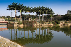 Lal Bagh gardens Bangalore Royalty Free Stock Images
