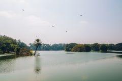 Lalbagh植物园在班格洛,印度 库存照片