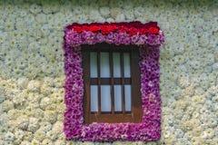 Lalbagh exhibición floral enero de 2019 imagen de archivo libre de regalías