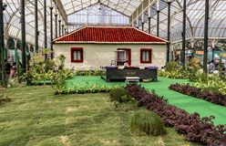 Lalbagh exhibición floral enero de 2019 - Ashram de Sabarmati imagenes de archivo