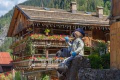 Lale w wysokogórskiej wiosce zdjęcie royalty free