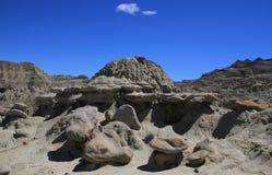 LaLeona öken i Argentina Arkivfoto
