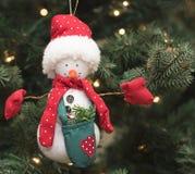 lali obwieszenia ornamentu bałwanu drzewo Obrazy Stock