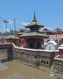 Lalitpur Katmandu Nepal tempel Royaltyfri Fotografi