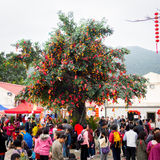 Lam Tsuen wishing trees. HONG KONG - FEBRUARY 14: Lam Tsuen wishing trees on February 14, 2013 in Hong Kong, China. It is one of the popular shrines and believed Stock Photography