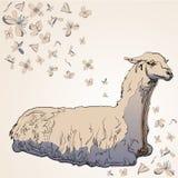 Lama Alpaca en estilo de la historieta con las flores Imágenes de archivo libres de regalías