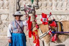 Lama avec les drapeaux et la femme péruviens Arequipa Pérou Photographie stock