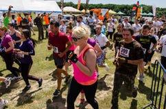 A lama corre em Mudness final, competição atlética em Bucareste Imagem de Stock