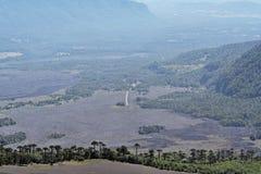 Lama de volcan - Chili, janvier 2006 Photographie stock